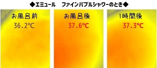 エミュールファインバブルシャワー体温の変化サーモ