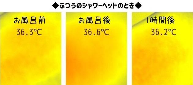普通のシャワーヘッド体温の変化サーモ
